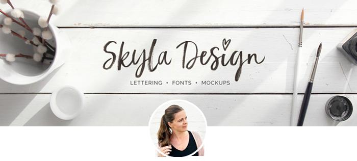 skyla_banner