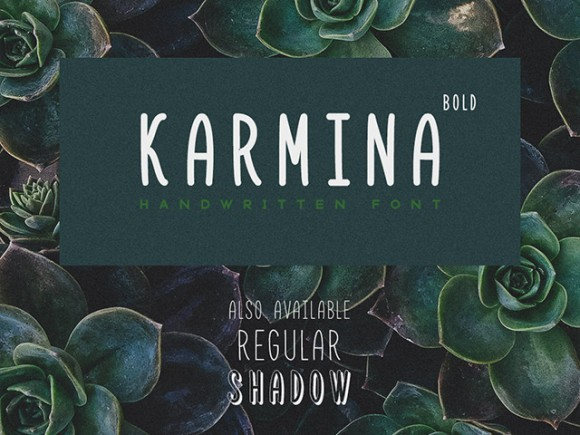 Explore Our Collection of Free Fonts - Karmina font on TheHungryJPEG