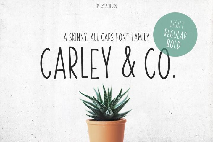 Carley & Co