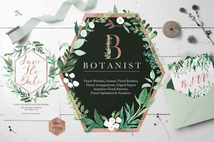 botanist watercolor greenery leaves