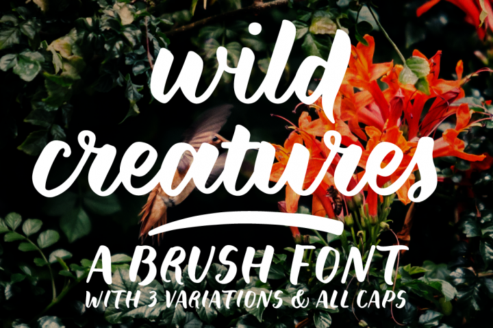 Freebies: Wild Creatures Font