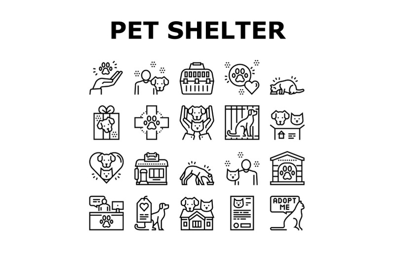 How to Celebrate International Homeless Animals Day and Save Lives
