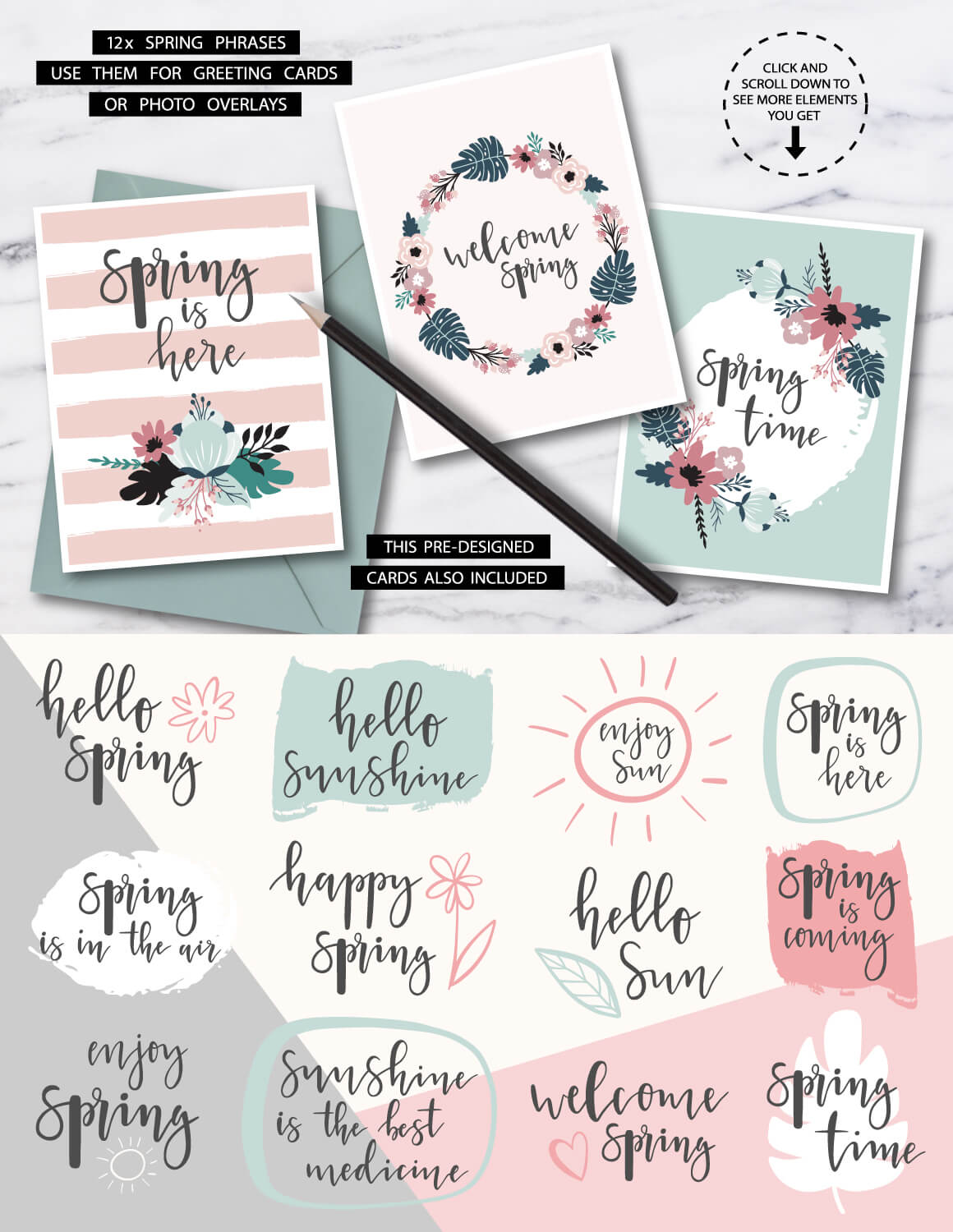 Spring Blooms clip art +branding kit 4